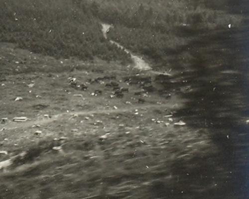 Harz 1932